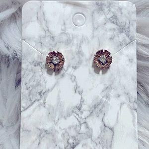 Bp Earrings/Studs